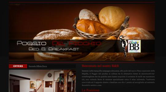 POGGIO DEL PICCHIO – Web Design